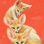 """three fennec foxes"" by pietrastone"