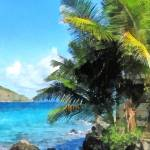 """Palm Trees and Beach St. Thomas VI"" by susansartgallery"