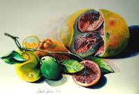Still Life of Citrus