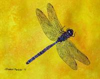 Blue and Purple Dragonfly on Yellow