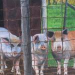 """""""Say """"Oink"""""""" by PaintedPathWatercolors"""