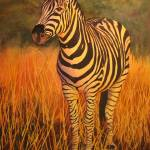 """Zebra II w"" by PaintedPathWatercolors"