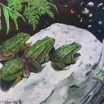 """""""Buddies"""" by PaintedPathWatercolors"""