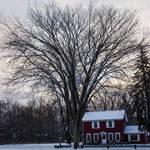 """""""Ada, Michigan (8882)"""" by Fotofrieze"""