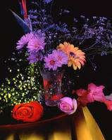 Painting with light  , Floral arrangement