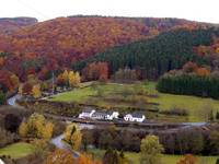Huttingen an der Kyll Autumn Leaves (B50), Germany