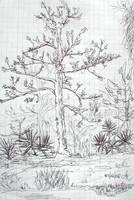 Florida Roadside Tree Sketch 2006