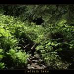 """""""Trail"""" by HarryReid"""
