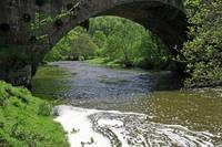 The River Dove Beneath Coldwall Bridge (30941-RDA)