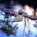 """""""Alameda Creek, Fremont"""" by worldwidearchive"""