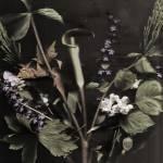 """""""Victorian Bouquet"""" by zoelavie"""