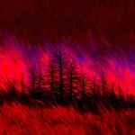 """Trees Afire"" by matthewjackson"