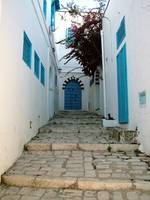 Walkway to Blue Door