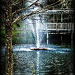 """""""Fountain of Youth"""" by ChrisCrowley"""