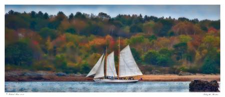 Sailing the Shoreline