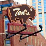"""""""Denver - Ted"""