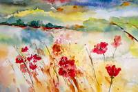 Poppies on Sunny Field