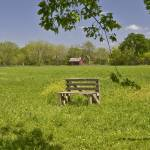 """Bench in Field"" by awsheffield"