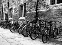 Trinity Bikes in Black and White
