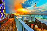 Colorful Beach Art Print Sunset Landscape Sea Hawk