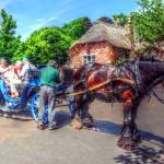 """Fine Art Photograph Horse and Cart Devon"" by SteveWalton"