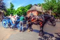 Fine Art Photograph Horse and Cart Devon