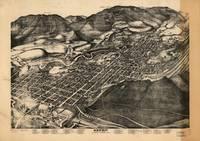 Vintage Map of Aspen Colorado (1893)