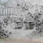 """beehive"" by mbiwa"