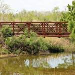 """Bridge To..."" by MagicalMemoriesStudios"