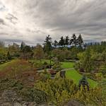 """Queen Elizabeth Park, Vancouver 8 April 2013"" by PriscillaTurner"