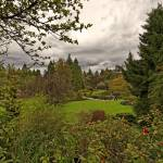 """Queen Elizabeth Park, Vancouver 5 April 2013"" by PriscillaTurner"