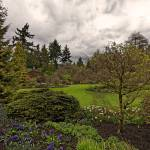 """Queen Elizabeth Park, Vancouver 4 April 2013"" by PriscillaTurner"