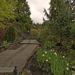 """Queen Elizabeth Park, Vancouver 2 April 2013"" by PriscillaTurner"