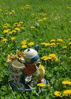 Dandelion Tea Party