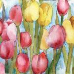 """Tulip Party, Pink Yellow watercolor floral paintin"" by schulmanart"