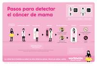 Breast Cancer Detection Steps (Spanish)