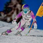"""""""Alpine Giant Slalom Skier"""" by dteetor2"""