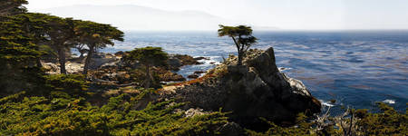 Panoramic View of the Pacific Coastline at Pebble
