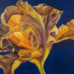 """Iris Painting on Blue"" by elizabethdoherty"