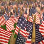 """Field of flags MPC 103b"" by millsware"