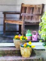 Pansies and Watering Cans on Steps