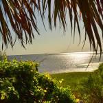 """ocean view"" by bawhiddon1"