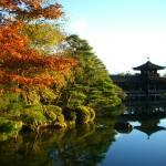 """Kyoto"" by rein"
