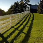 """""""Shadow and Horse Fence 8863"""" by CooperSlay"""