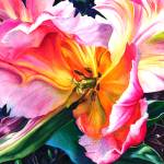 """Wilting Parrot Tulip"" by KellyEddington"