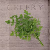 Classic herbs series: Celery