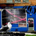 """""""350gull"""" by tomgreaves"""
