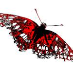 """Butterfly - Black White And Red Series"" by bettynorthcutt"