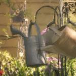 """""""WATERING CANS"""" by shaynaphotography"""