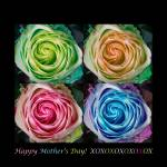 """Happy Mothers Day Hugs Kisses and Colorful Rose Sp"" by lightningman"